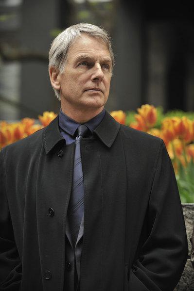 Mark Harmon as Lucas Davenport_6
