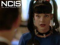 Pauley Perrette, Abby Sciuto on NCIS