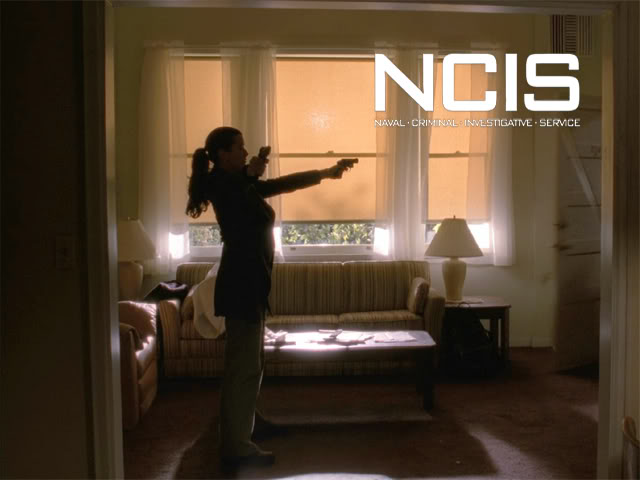 Cote de Pablo as Ziva David on NCIS
