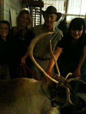 Pauley Perrette hangs out backstage at the Talk with guest Jack Hanna! — Reindeer