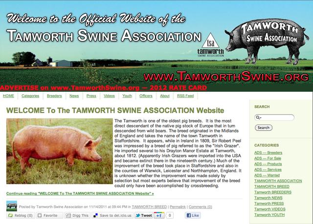 www.TamworthSwine.org