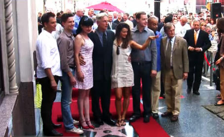 MARK HARMON STAR - Hollywood Walk Of Fame - @HavenHart Photo