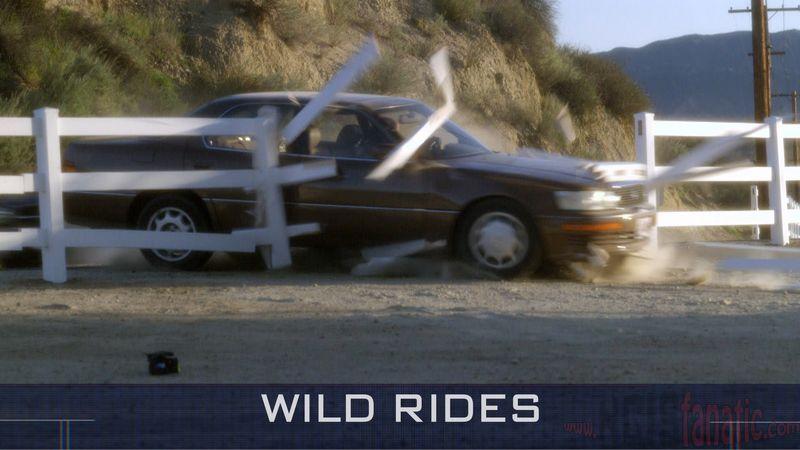 03 Wild Rides